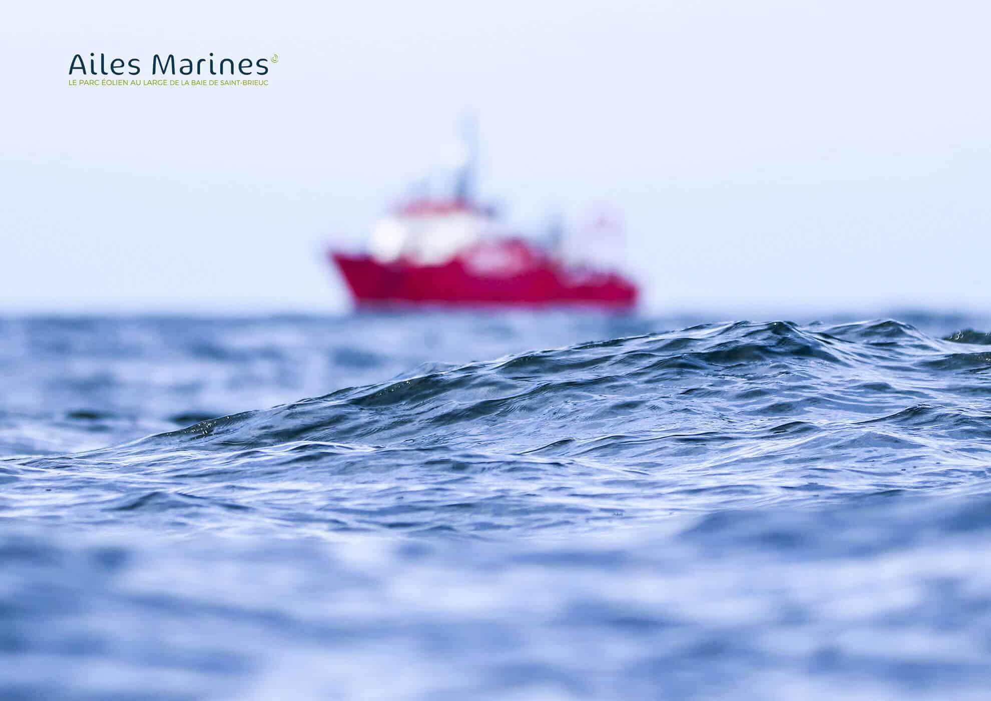ailes-marines-mer-et-bateau