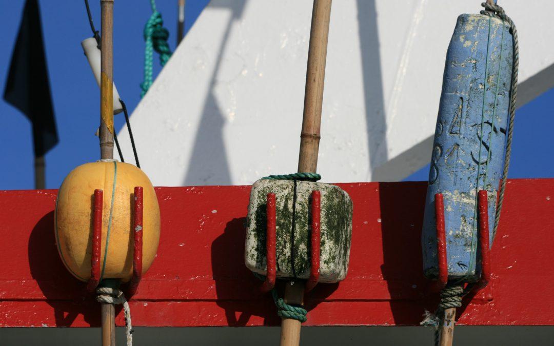 Des compensations pour les pêcheurs professionnels pendant les phases de construction, d'exploitation et de démantèlement du parc
